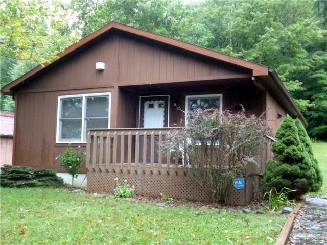 25 Timber Hill Lane, South Fallsburg, NY 12779 (MLS #4842929) :: Shares of New York