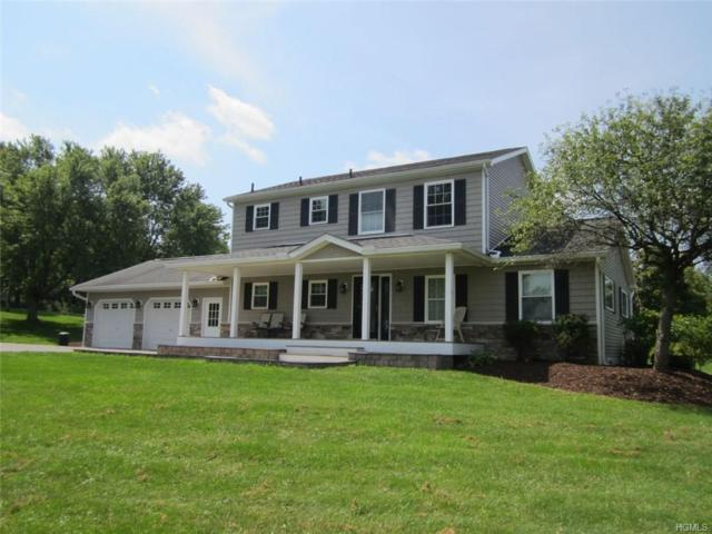 243 Schuman Road, Damascus, NY 18415 (MLS #4842992) :: Shares of New York