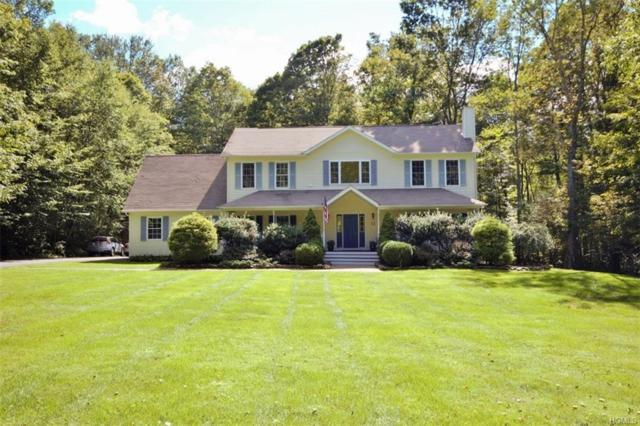 6 Partridge Lane, Patterson, NY 12563 (MLS #4843000) :: Shares of New York