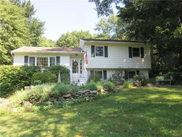 36 Ritter Road, Stormville, NY 12582 (MLS #4843043) :: Mark Boyland Real Estate Team