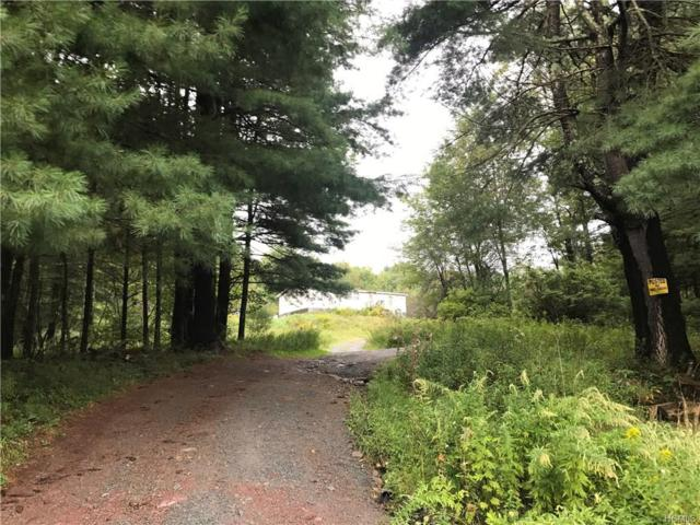 526 Benton Hollow Road, Woodbourne, NY 12788 (MLS #4843084) :: Stevens Realty Group