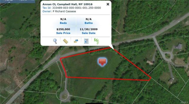 Annan Court, Campbell Hall, NY 10916 (MLS #4843220) :: Mark Boyland Real Estate Team