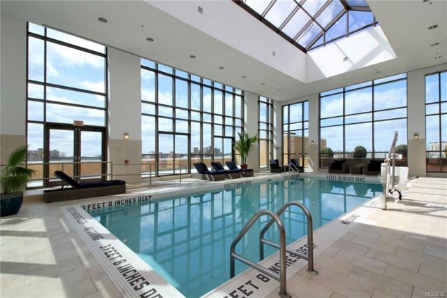 175 Huguenot Street #1402, New Rochelle, NY 10801 (MLS #4843238) :: Mark Boyland Real Estate Team