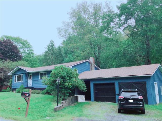 40 Airport Road, Eldred, NY 12732 (MLS #4843285) :: Stevens Realty Group