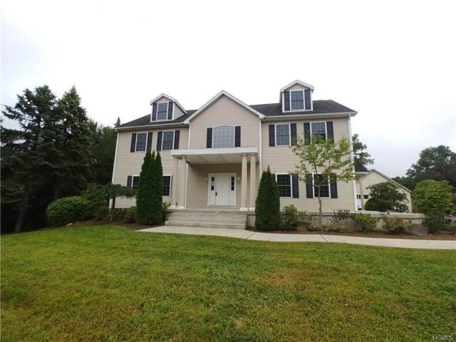 352 Blauvelt Road, Pearl River, NY 10965 (MLS #4843337) :: Mark Boyland Real Estate Team
