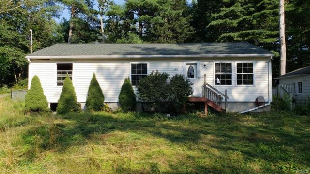 40 Birch Road, Wurtsboro, NY 12790 (MLS #4843360) :: Shares of New York