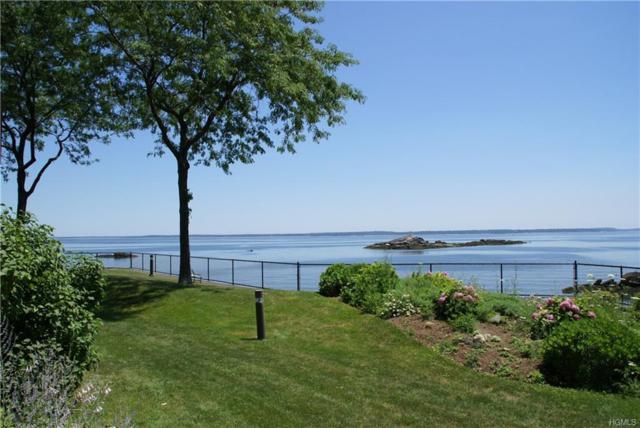 56 Waters Edge #56, Rye, NY 10580 (MLS #4843376) :: William Raveis Baer & McIntosh