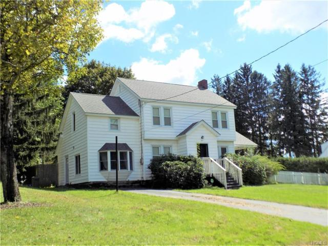 65 Winslow Place, Liberty, NY 12754 (MLS #4843460) :: Stevens Realty Group