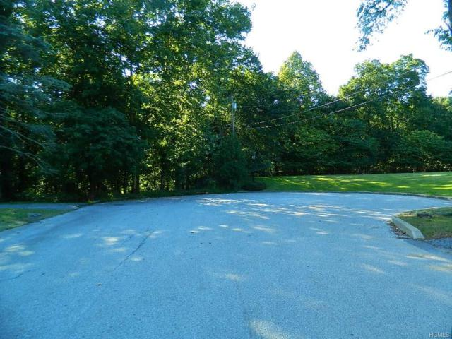 Seaman Road, Poughkeepsie, NY 12601 (MLS #4843472) :: Shares of New York