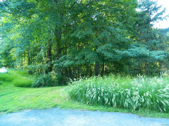 Gus Siko Road, Poughkeepsie, NY 12601 (MLS #4843473) :: Shares of New York