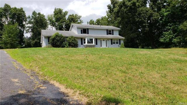 423 Prosperous Valley Road, Middletown, NY 10940 (MLS #4843477) :: Shares of New York