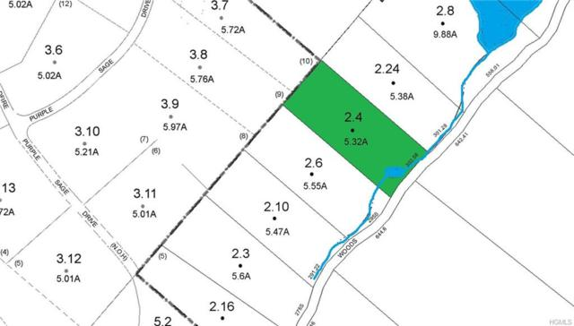 Woods Road, Barryville, NY 12719 (MLS #4843584) :: Stevens Realty Group