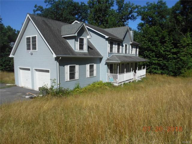 137 County Route 22, Johnson, NY 10933 (MLS #4843586) :: Shares of New York