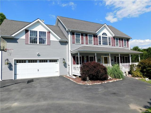 67 Paddock Drive, Pine Bush, NY 12566 (MLS #4843594) :: Mark Boyland Real Estate Team