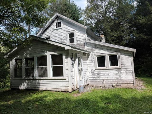 563 Gulf Road, Roscoe, NY 12776 (MLS #4843673) :: Stevens Realty Group