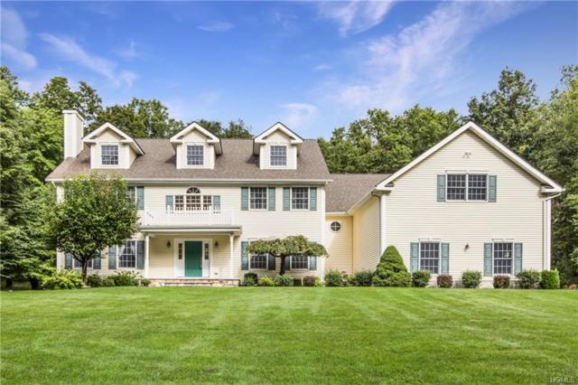284 Holmes Road, Holmes, NY 12531 (MLS #4843678) :: Mark Boyland Real Estate Team