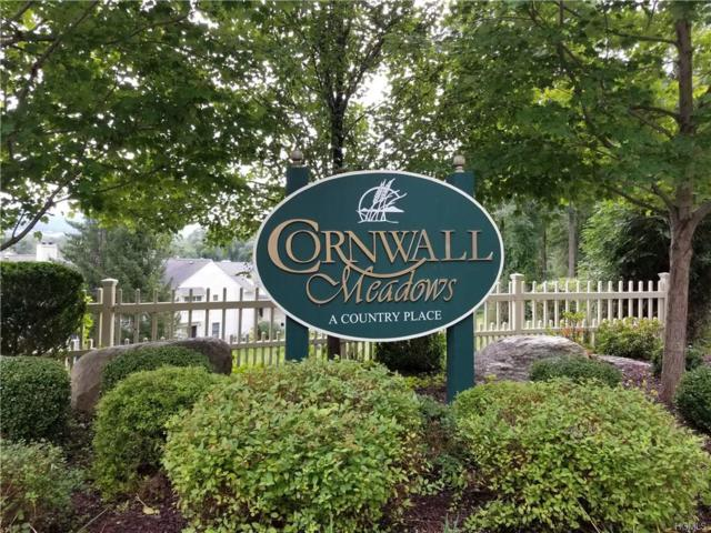 311 Cornwall Meadows Lane, Patterson, NY 12563 (MLS #4843687) :: Shares of New York