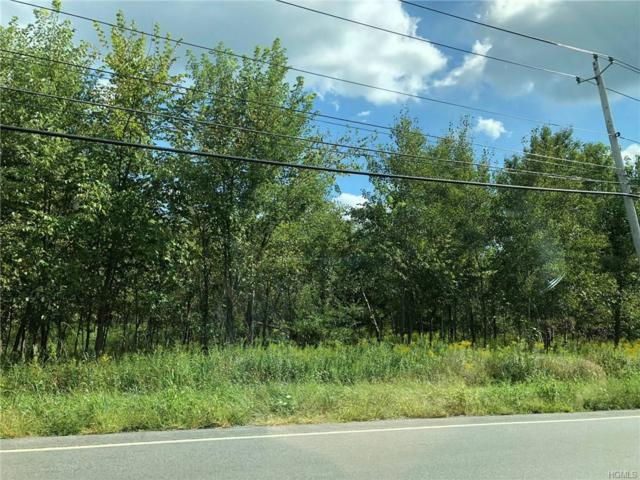 State Route 302, Pine Bush, NY 12566 (MLS #4843719) :: Stevens Realty Group