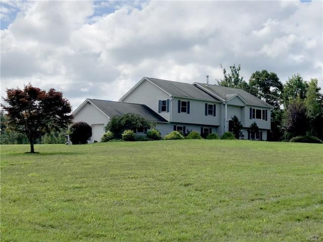 77 Horton Road, Bloomingburg, NY 12721 (MLS #4843722) :: Shares of New York