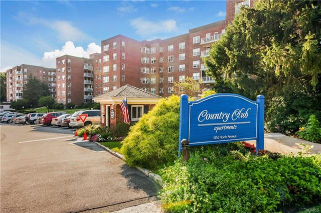 1255 North Avenue C-4S, New Rochelle, NY 10804 (MLS #4843747) :: William Raveis Legends Realty Group