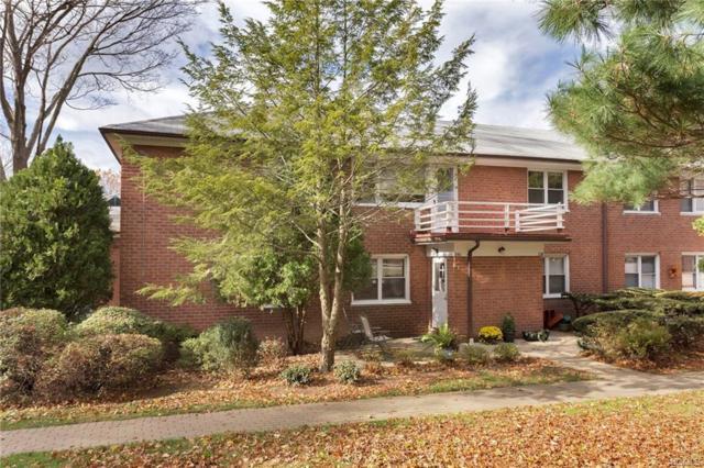 240 S Buckhout Street #240, Irvington, NY 10533 (MLS #4843751) :: William Raveis Legends Realty Group