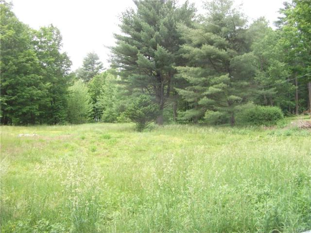 1 Trails End, Godeffroy, NY 12729 (MLS #4843772) :: Stevens Realty Group