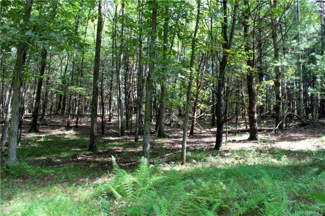 Parcel D Highwoods Road, Saugerties, NY 12477 (MLS #4843776) :: Mark Seiden Real Estate Team