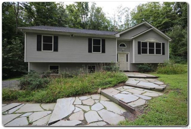 1 Roaring Brook Road, Cornwall, NY 12518 (MLS #4843865) :: Shares of New York