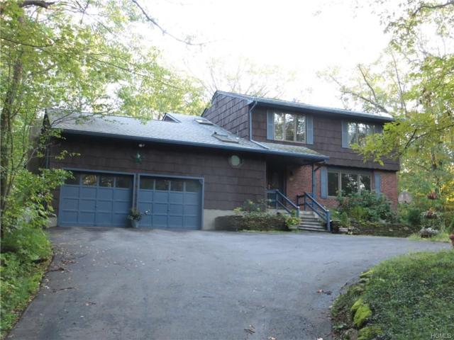 68 Birch Drive, Pleasant Valley, NY 12569 (MLS #4843905) :: Shares of New York