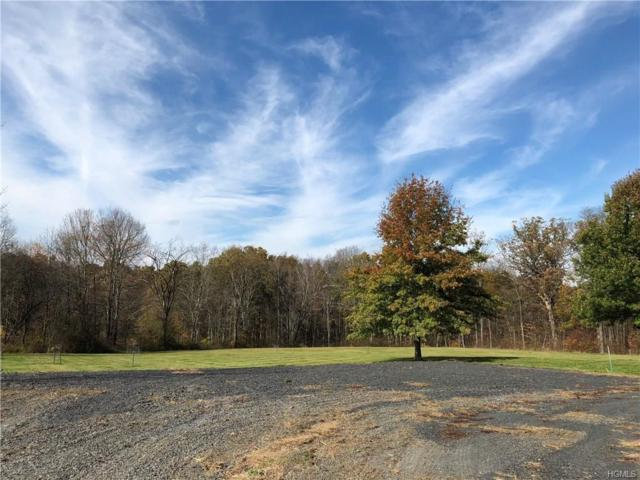 1784 Albany Post Road, Wallkill, NY 12589 (MLS #4843966) :: Stevens Realty Group
