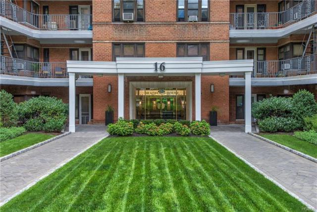 16 N Broadway Kgr, White Plains, NY 10601 (MLS #4843994) :: Mark Boyland Real Estate Team