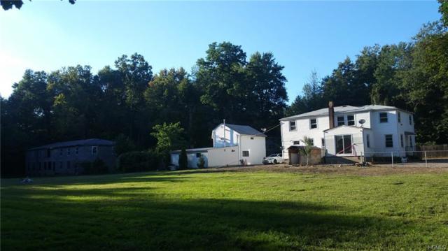 110 W Clarkstown Road, New City, NY 10956 (MLS #4844005) :: Mark Boyland Real Estate Team