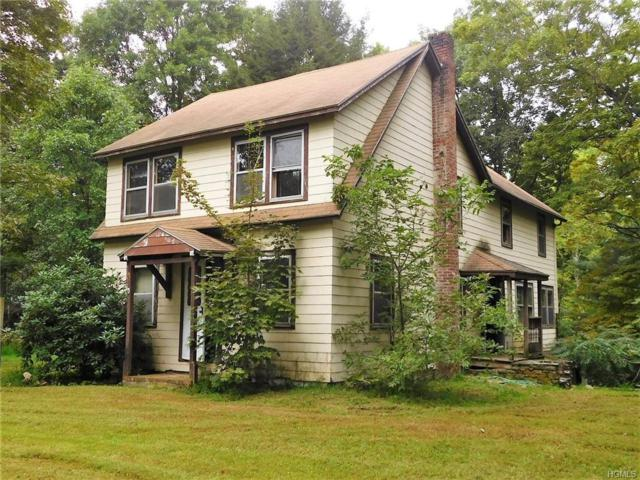 193 Creek Road, Pleasant Valley, NY 12569 (MLS #4844041) :: Shares of New York
