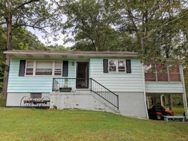 6 Schumacher Pond Road, Barryville, NY 12719 (MLS #4844110) :: Stevens Realty Group