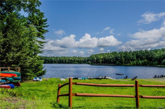 Summit Drive, Eldred, NY 12732 (MLS #4844116) :: Stevens Realty Group
