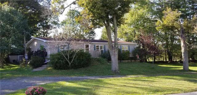 317 Mueller Road, Cochecton, NY 12726 (MLS #4844121) :: Stevens Realty Group