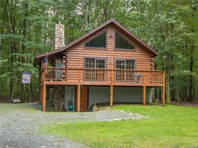 81 East Road, Wurtsboro, NY 12790 (MLS #4844192) :: Shares of New York