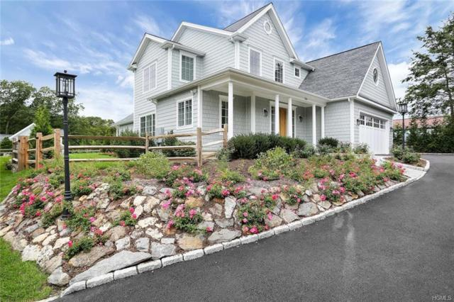 554 River Road, Call Listing Agent, NY 06807 (MLS #4844217) :: Shares of New York