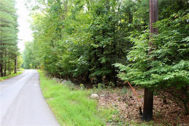 Parcel C Cedar Drive, Kerhonkson, NY 12446 (MLS #4844241) :: Stevens Realty Group