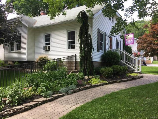 12 Palmer Avenue, Monroe, NY 10950 (MLS #4844377) :: Mark Boyland Real Estate Team