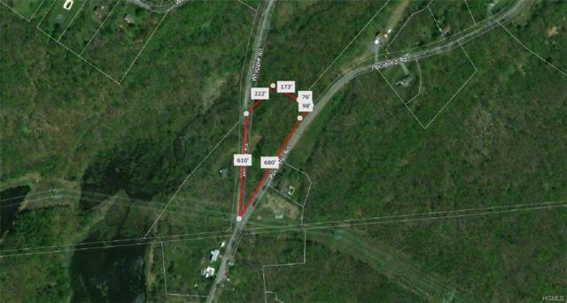 Whipple & Pocatello Road, Middletown, NY 10940 (MLS #4844454) :: Shares of New York