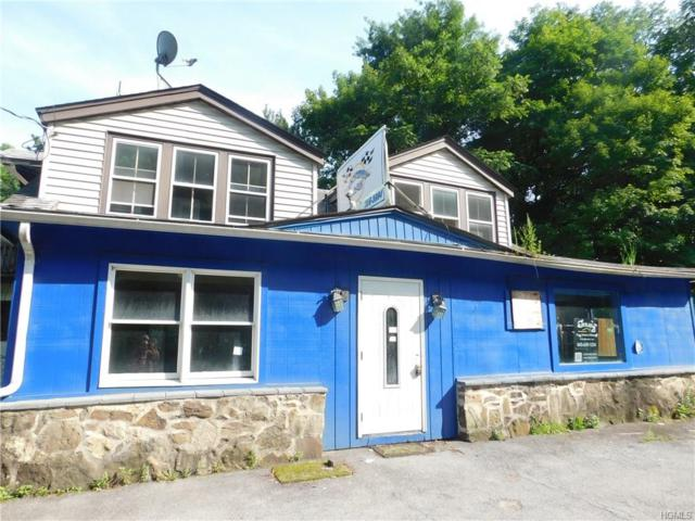 8 Sanitorium Avenue, Otisville, NY 10963 (MLS #4844481) :: Shares of New York