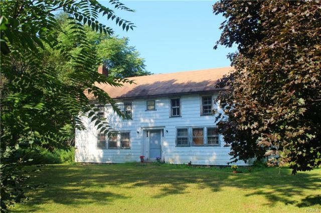 266 East Road, Wallkill, NY 12589 (MLS #4844538) :: William Raveis Legends Realty Group
