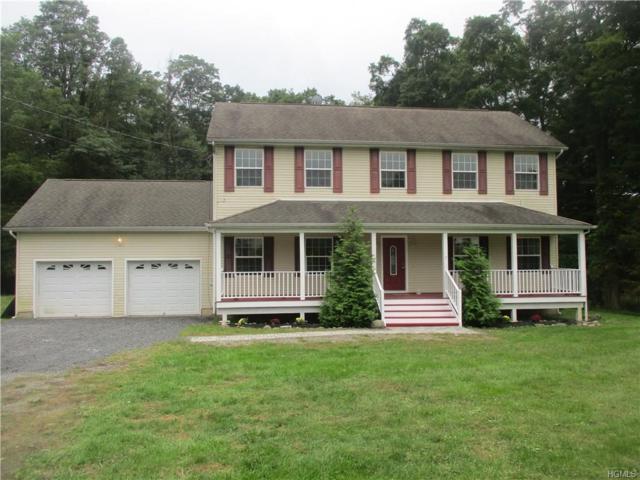 41 Sherman Avenue, Walden, NY 12586 (MLS #4844615) :: Stevens Realty Group