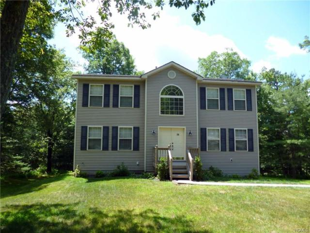 56 Picadilly Circle, Rock Hill, NY 12775 (MLS #4844631) :: Stevens Realty Group