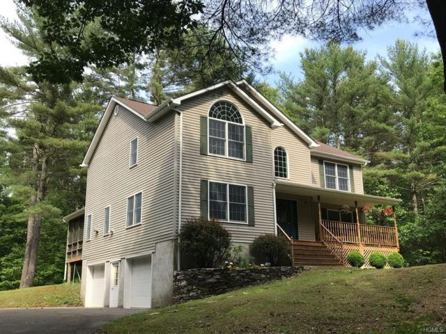 186 Creek Road, Pleasant Valley, NY 12569 (MLS #4844646) :: Shares of New York