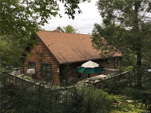 383 Buttermilk Falls Road, Warwick, NY 10990 (MLS #4844648) :: Stevens Realty Group