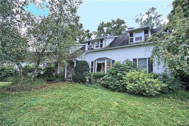 5 Clearwater Road, New Paltz, NY 12561 (MLS #4844654) :: Mark Boyland Real Estate Team