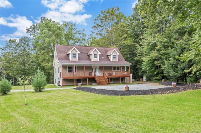 1426 Burlingham Road, Pine Bush, NY 12566 (MLS #4844695) :: Stevens Realty Group