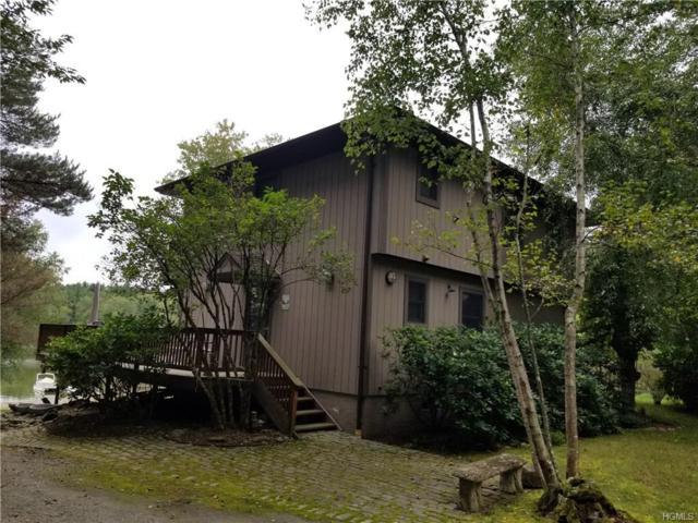 133 Lake Shore Drive, Monticello, NY 12701 (MLS #4844732) :: Stevens Realty Group